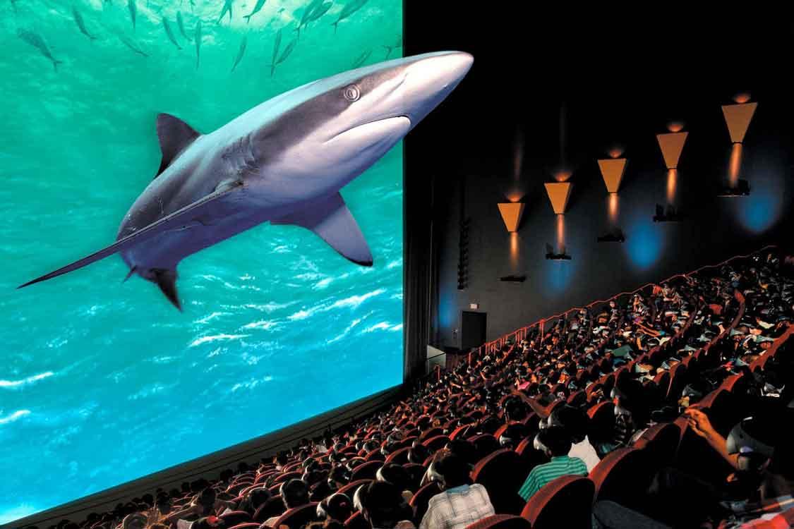 Os filmes 3D estão cada vez mais na moda e quase todas as semanas sai um  novo filme 3D para o cinema. Este tipo de filmes atrai muita gente por  causa das ... ab4c710212